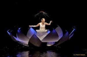 Zwolle Stadsfestival  2015 - Chanson d'eau by night